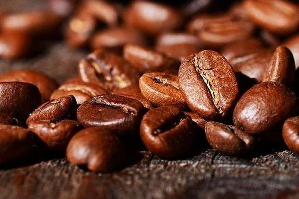 Cà phê chấm dứt đà giảm, hồi phục trở lại