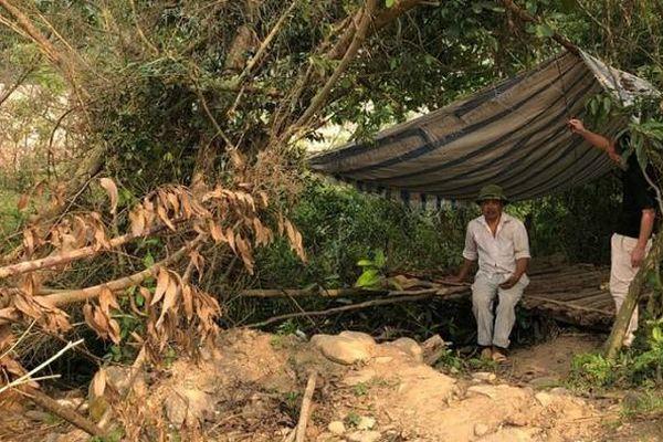 Vĩnh Phúc: Cần 'hài hòa lợi ích' các bên khi thực hiện Dự án Khu du lịch sinh thái Nam Tam Đảo
