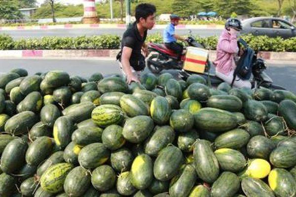 Nông nghiệp Việt giữa 'cơn bão' dịch bệnh virus Corona