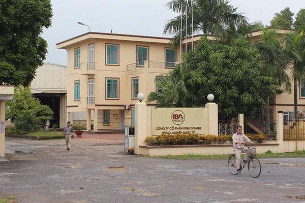Dấu hiệu sai phạm tại Công ty Việt Thái Và Công ty IBA: Nguyên nhân - hệ lụy