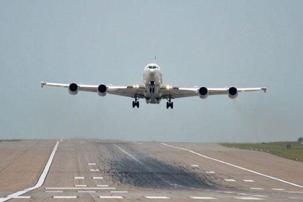 Siêu máy bay của Hải quân Mỹ suýt bị 'hạ gục' bởi… một con chim
