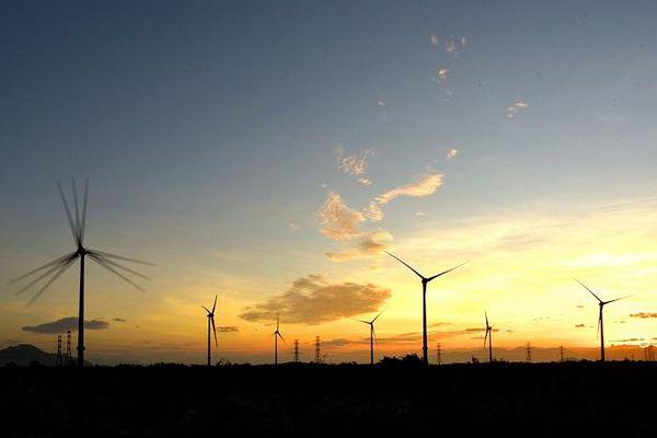 Ninh Thuận: 8 dự án điện gió chậm tiến độ do phải bổ sung thủ tục pháp lý