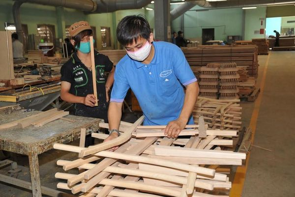 Gỗ Trường Thành (TTF) thông qua kế hoạch bán bớt công ty con trong lĩnh vực trồng rừng