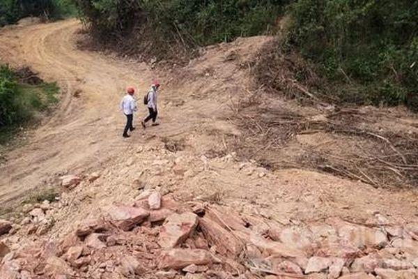 Mở đường trong rừng đặc dụng để chở gỗ và tuần tra bảo vệ rừng?