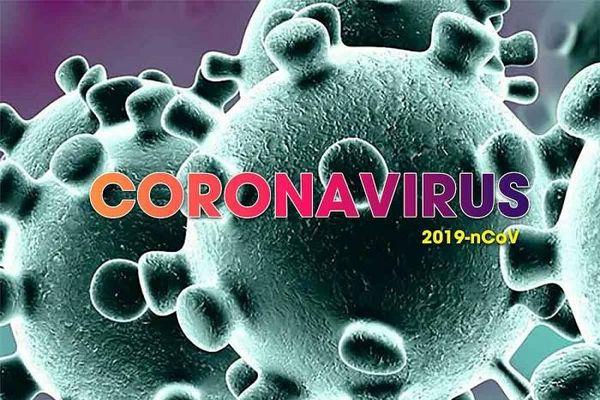 Cập nhật 21h ngày 4/3: Phát hiện có 2 loại virus SARS-CoV-2 gây bệnh Covid-19, ca khúc Ghen Cô Vy của Việt Nam 'gây bão'