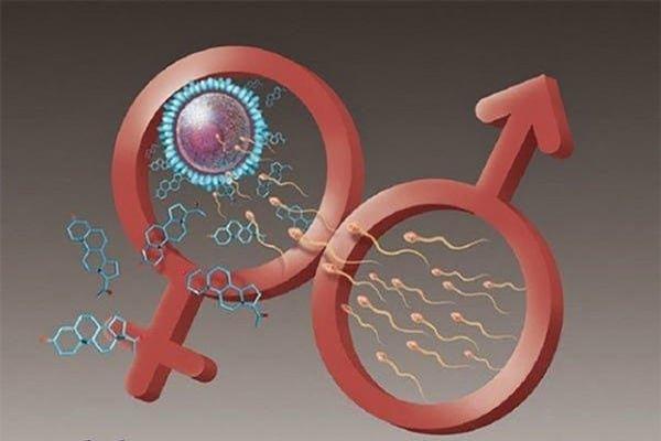 Các yếu tố ảnh hưởng tới khả năng sinh sản ở nam giới