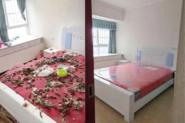 Chứng kiến phòng trọ bẩn như bãi rác, chủ nhà làm điều khiến khách 'xanh mặt'