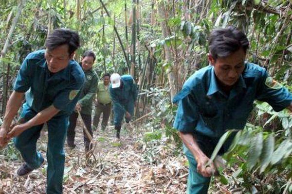 Lên Bù Dốt xem giữ rừng
