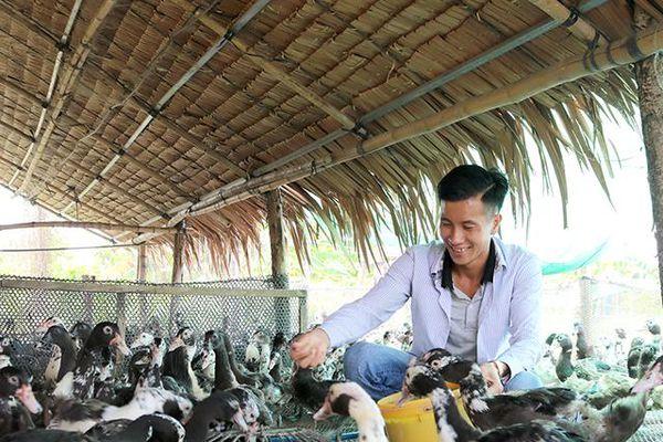 Vươn lên ổn định cuộc sống từ nghề chăn nuôi gà, vịt thịt
