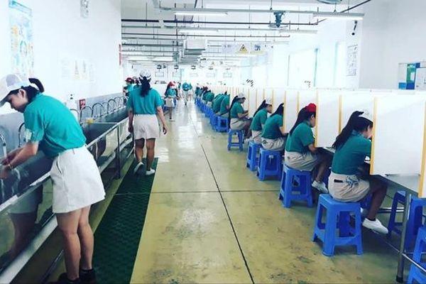 Các khu chế xuất, khu công nghiệp tại thành phố Hồ Chí Minh: Đồng bộ nhiều giải pháp chống dịch