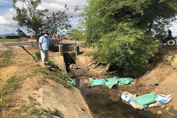 Thiếu nước sản xuất nông nghiệp