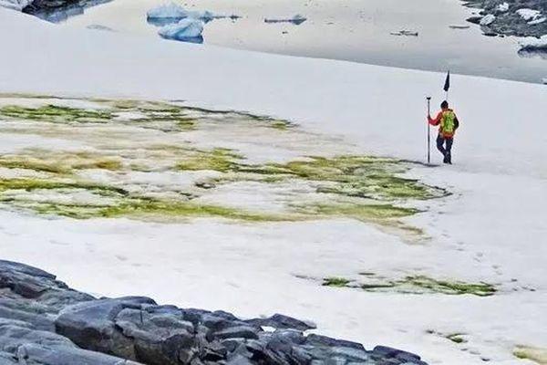 Băng tuyết Nam cực chuyển màu xanh, lời cảnh báo sốc cho nhân loại