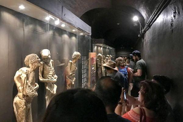 'Tim đập chân run' khi vào bảo tàng xác ướp nổi tiếng thế giới
