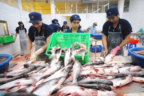 Thúc đẩy thị trường tiêu thụ ngành hàng thủy sản 'tỷ đô'