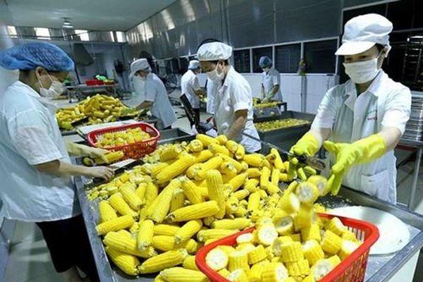 Cơ hội cho nông sản, thực phẩm, sản phẩm y tế Việt phát triển thị trường Nhật Bản