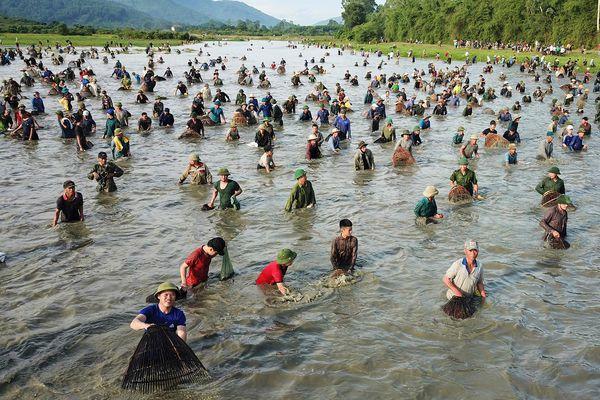 Hàng nghìn người chen chúc bắt cá cầu may