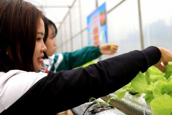 Mô hình nông nghiệp công nghệ cao vào trường học