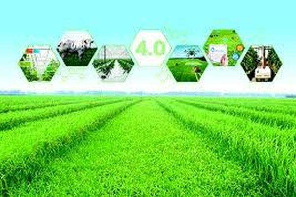 Xu hướng ứng dụng công nghệ 4.0 trong sản xuất nông nghiệp và hàm ý chính sách cho Việt Nam