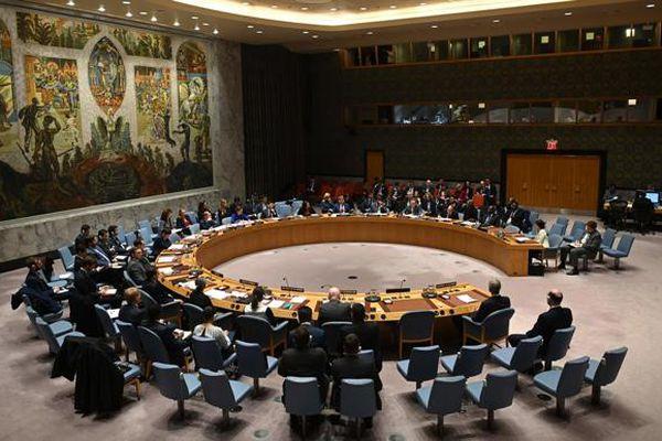 Việt Nam tái khẳng định ủng hộ Colombia về giám sát thực thi thỏa thuận hòa bình