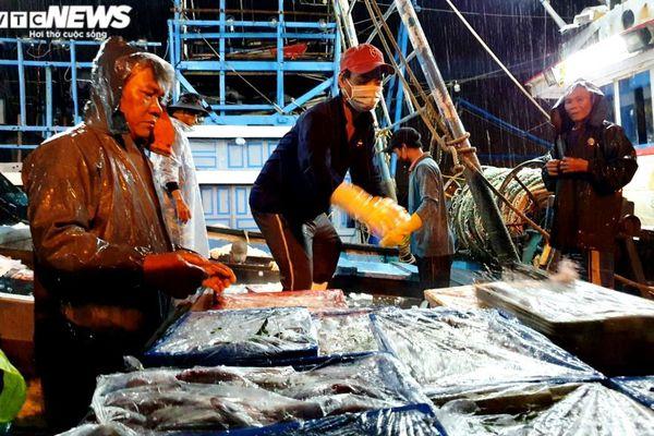 Ngư dân đội mưa xuyên đêm bốc cá trước giờ bão số 5 đổ bộ