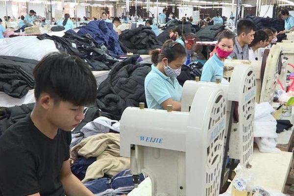 Thái Bình: Chú trọng, đẩy mạnh công tác giải quyết việc làm cho người lao động từ nguồn Quỹ quốc gia về việc làm