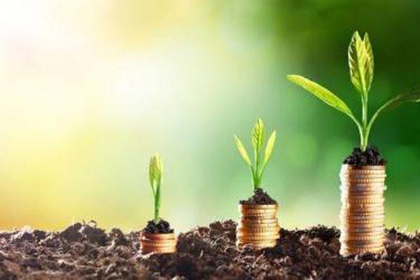 Tăng trưởng mạnh nửa đầu năm, 'bé hạt tiêu' HDBS vừa hoàn tất tăng vốn gấp đôi