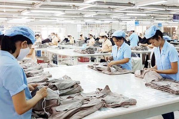 Kinh tế Việt Nam dần hồi phục