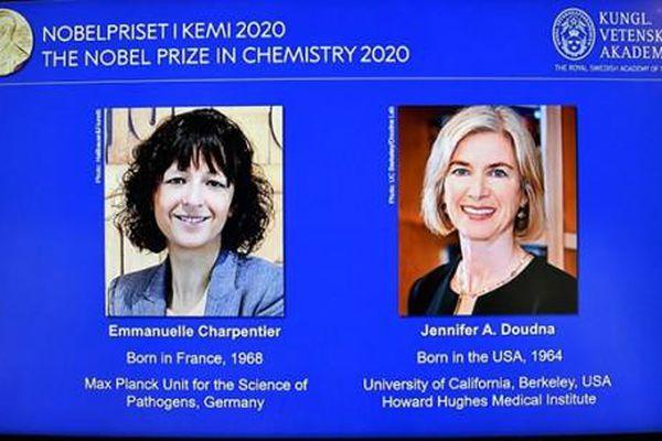 Nobel Hóa học 2020 được trao cho hai nhà khoa học phát triển phương pháp chỉnh sửa gene