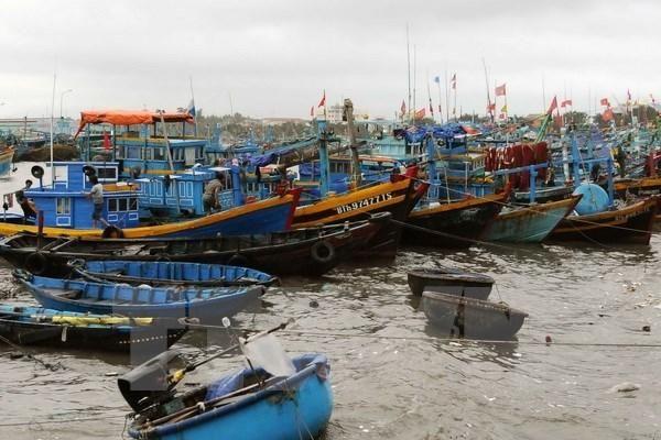 Tàu cá chở 6 thuyền viên bị chìm tại khu vực gần cảng Cửa Việt