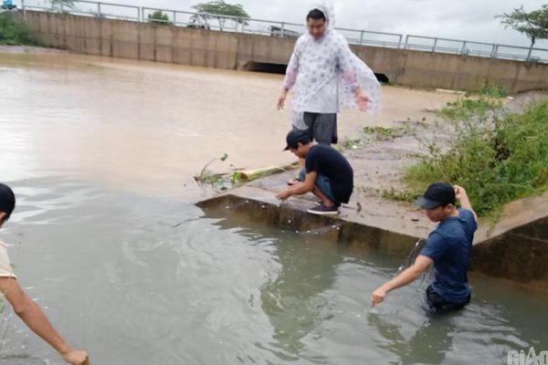 Nước lũ lên cao, dân Đà Nẵng, Quảng Nam đổ xô giăng lưới bắt cá