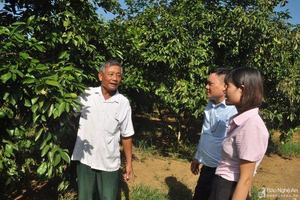 9 tháng, hơn 57 nghìn hộ nghèo và các đối tượng chính sách ở Nghệ An được vay vốn ưu đãi