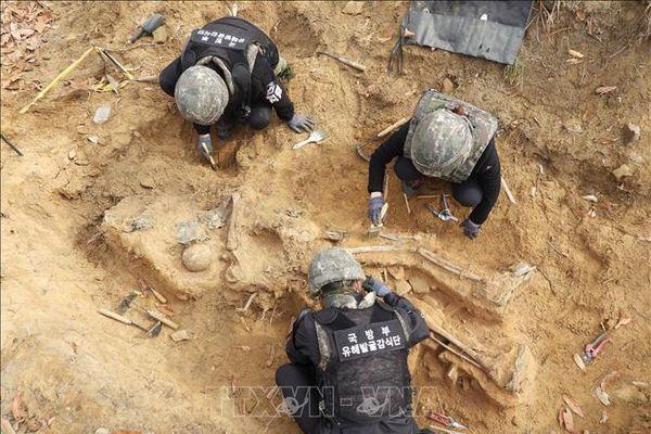Hàn Quốc khai quật hơn 300 mảnh hài cốt tại khu vực DMZ