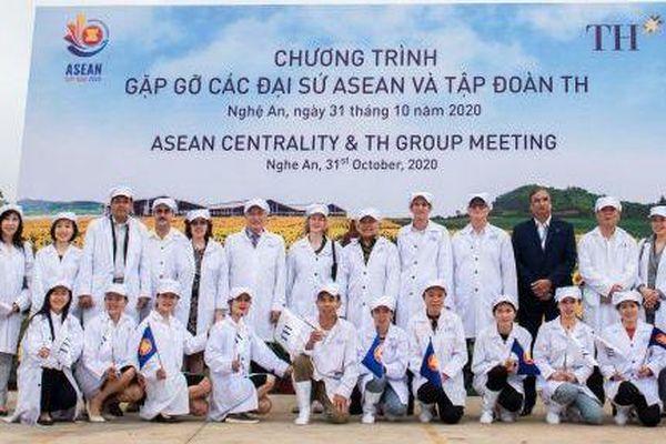 Đại diện ngoại giao các nước tìm hiểu về mô hình chăn nuôi bò sữa công nghệ cao của Việt Nam