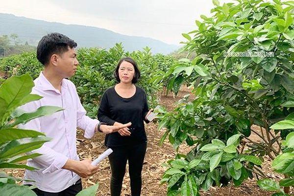 Hiệu quả từ phong trào thi đua 'Dân vận khéo' ở tỉnh Sơn La