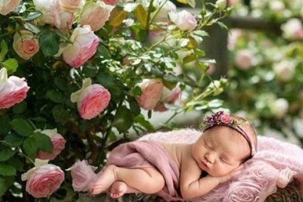Năm 2021 mệnh gì? Sinh con năm 2021 có đẹp không?