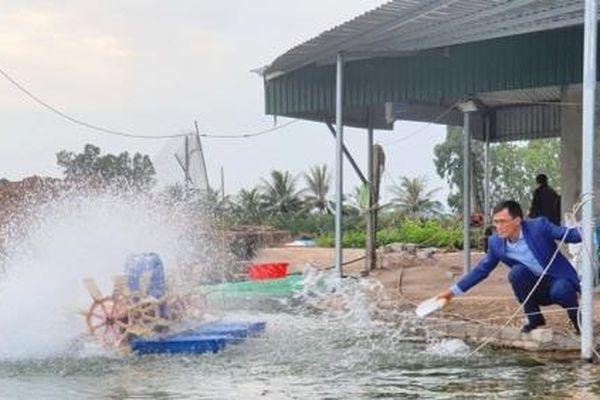 Quảng Ninh: Cán bộ phường khởi xướng phong trào nuôi cá trắm đen