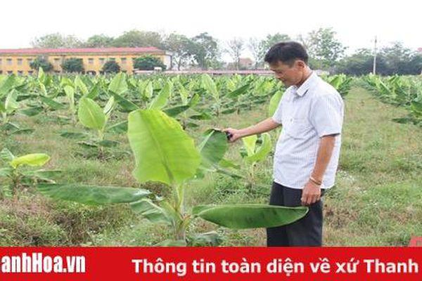 Đẩy mạnh thu hút doanh nghiệp đầu tư liên kết và bao tiêu sản phẩm nông nghiệp