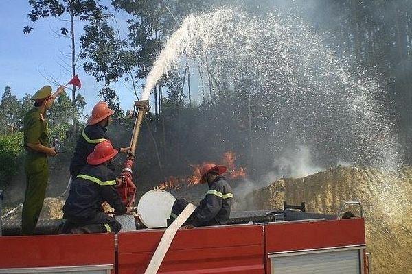 Thực hiện đồng bộ các biện pháp phòng cháy, chữa cháy rừng mùa khô hanh