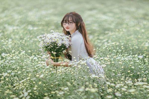 Cô giáo hot girl khoe nhan sắc nghiêng ngả bên hoa cúc họa mi