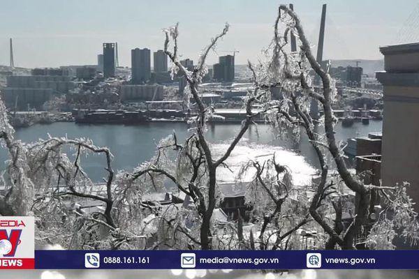 Nga: Thành phố băng sau trận bão tuyết dữ dội