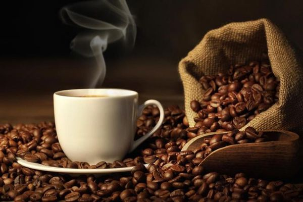 Giá cà phê hôm nay 22/11: Giữ ổn định, giá cà phê lạc quan trong vụ thu hoạch mới