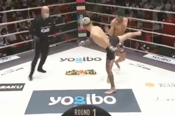 Võ sĩ Nhật hạ knock-out nhau trên sàn đấu MMA