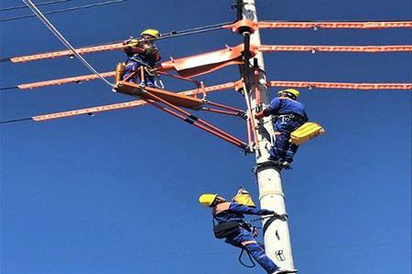 PC Ninh Bình phấn đấu giảm tổn thất điện năng xuống 4,39%