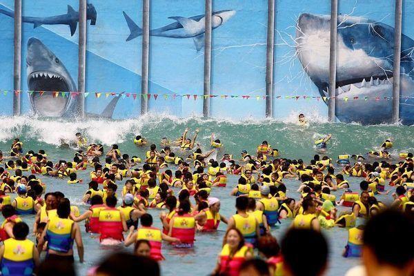 Ông bố Trung Quốc giúp cậu con trai 2 tuổi 'bắt' cá mập