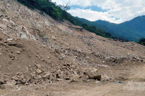 Thanh Hóa: Công ty Đông Thuận Phát phá rừng ngay trước mắt chính quyền?