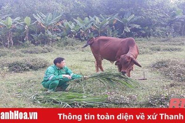 Dự án nhân rộng mô hình giảm nghèo ở thị xã Nghi Sơn