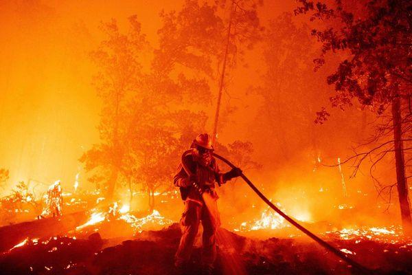 Liên Hợp Quốc khẩn thiết kêu gọi chấm dứt cuộc chiến với thiên nhiên