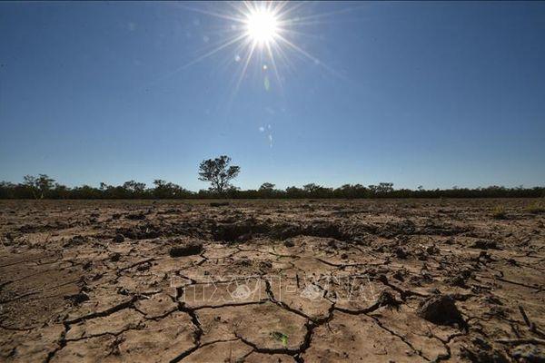 LHQ: Năm 2020 là một trong 3 năm nóng nhất lịch sử