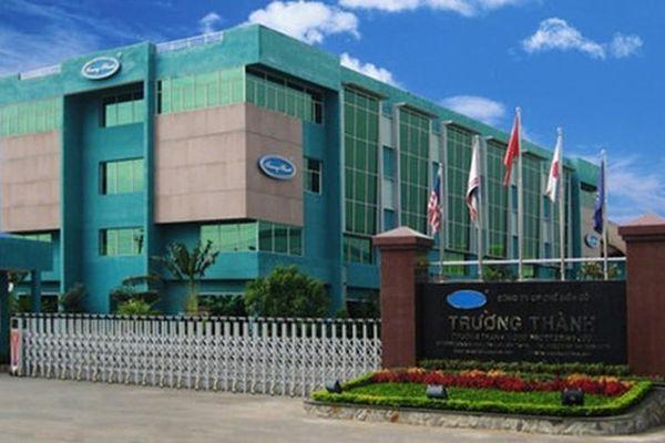 Gỗ Trường Thành quyết thoái sạch vốn tại công ty lâm nghiệp