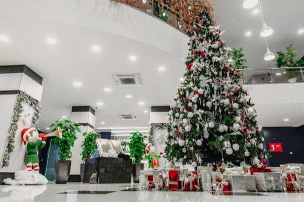 Rộn ràng không khí Noel, trường ĐH trang hoàng cây thông và tiểu cảnh cực bắt mắt cho SV tha hồ 'sống ảo'